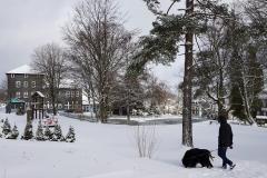 Hundeurlaub-Schnee-Gehlberg