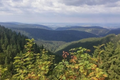 Ausblick-von-Gehlberg