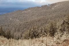 Schnee-ausblick-auf-Suhl