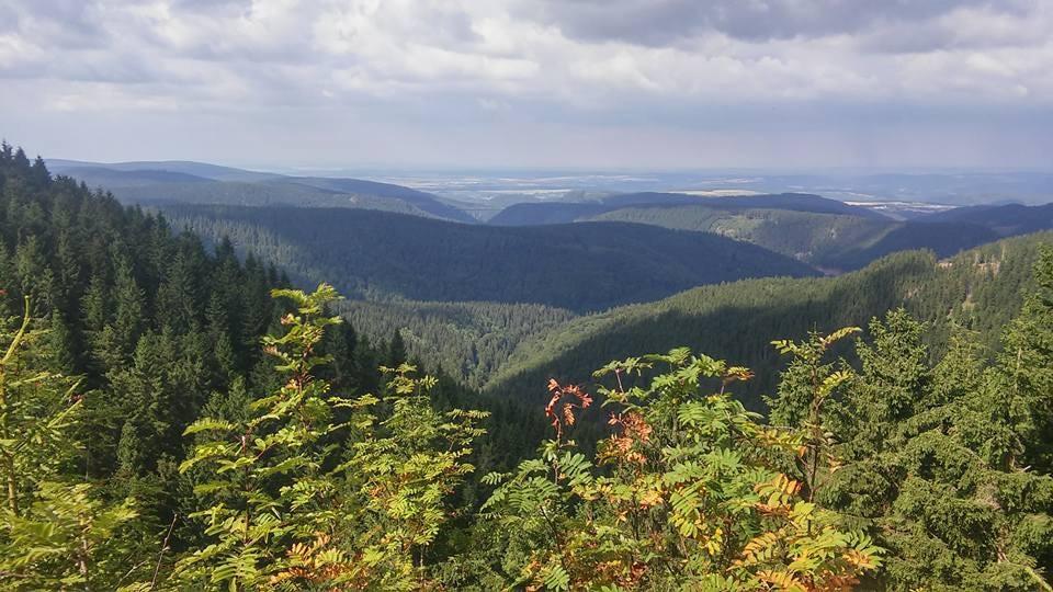 Ausblick von Gehlberg